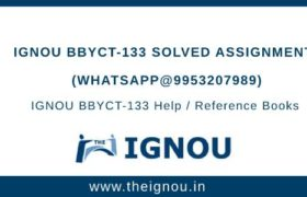IGNOU BBYCT133 Assignment